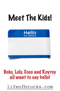 Meet the Kids