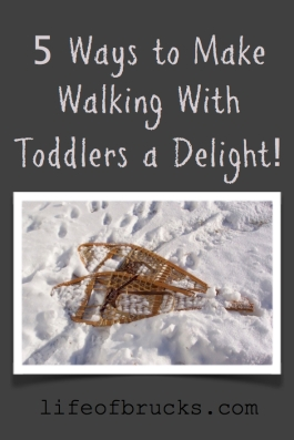 Walking with Toddlers