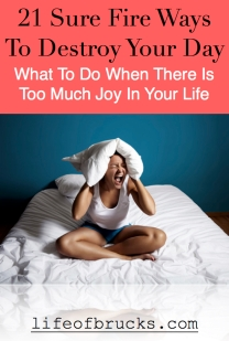 21 Sure Fire Ways To Destroy Your Day WWW.LIFEOFBRUCKS.COM Joy