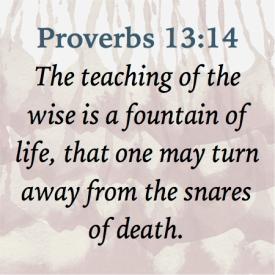 Proverbs 13-14