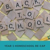 Homeschool~ Year 1 Catch-Up ~Year 2 Begins...
